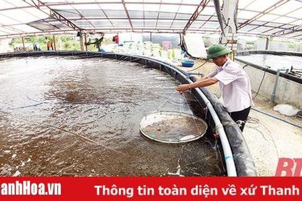 Khó khăn trong tiếp cận các chính sách hỗ trợ phát triển thủy sản