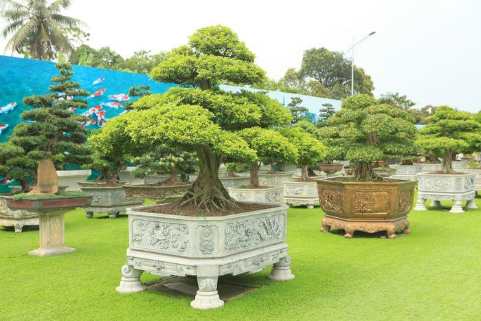 Trung tâm Thương mại và Du lịch Dũng Tân: Điểm đến lý tưởng trong kỳ nghỉ lễ 30/4 và 01/5 - Ảnh 8