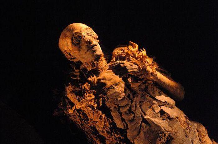 Kết quả hình ảnh cho hatshepsut mummy