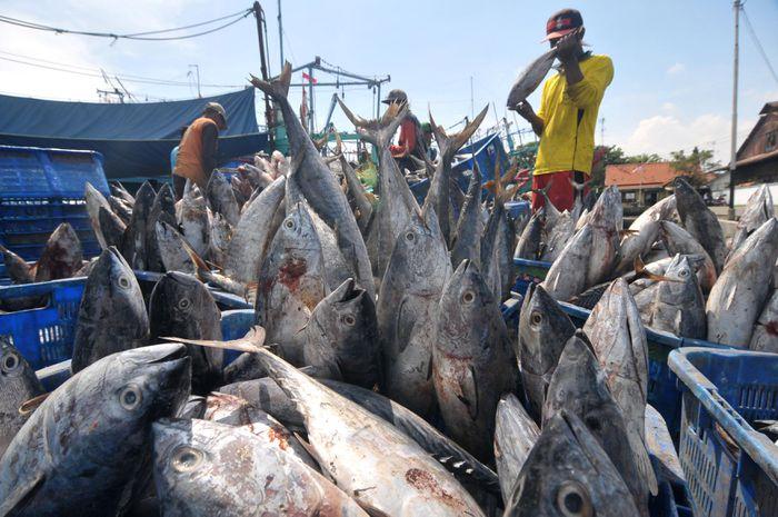 Ai đứng sau những vụ đánh chìm tàu cá các nước ASEAN ở Indonesia?