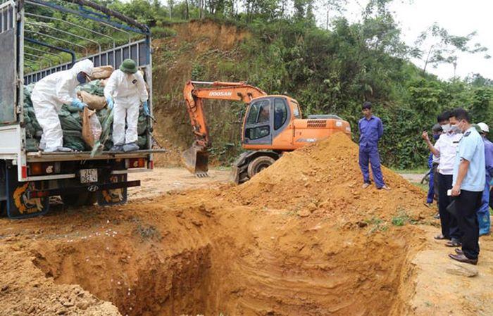 Báo TNMT: Lào Cai: Tiêu hủy gần 16 tấn thực phẩm bẩn không rõ nguồn gốc