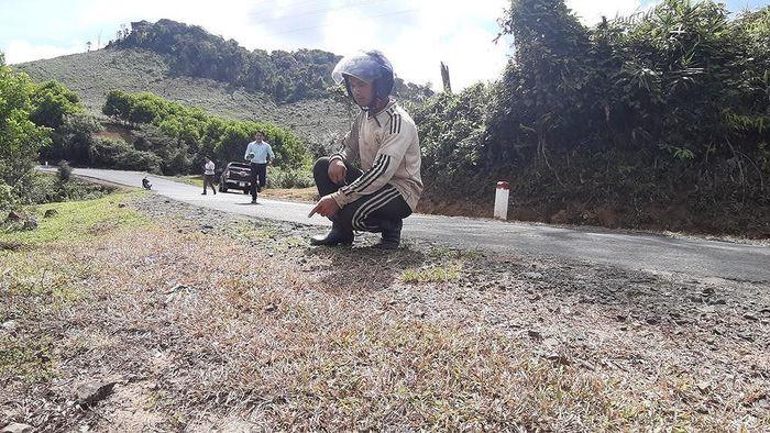 Báo SGGP: Phát quang cây cỏ 2 bên quốc lộ bằng… thuốc diệt cỏ