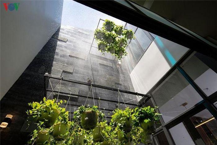 Hệ thống tưới nước tự động giúp cây xanh luôn tươi tốt