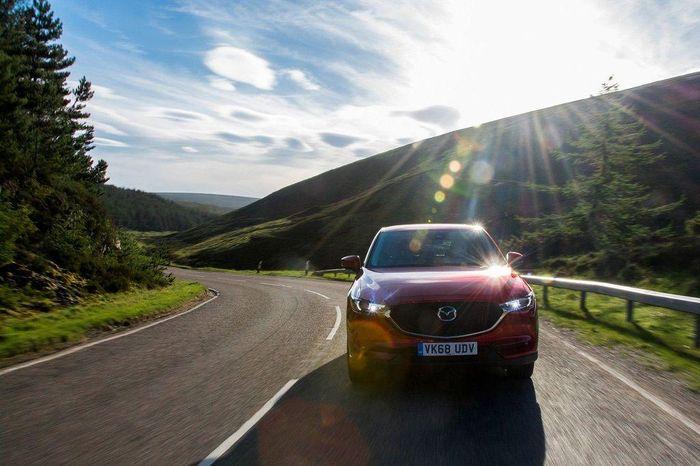 Chọn mua ô tô máy dầu hay máy xăng, băn khoăn của không ít người mua xe - Cartimes