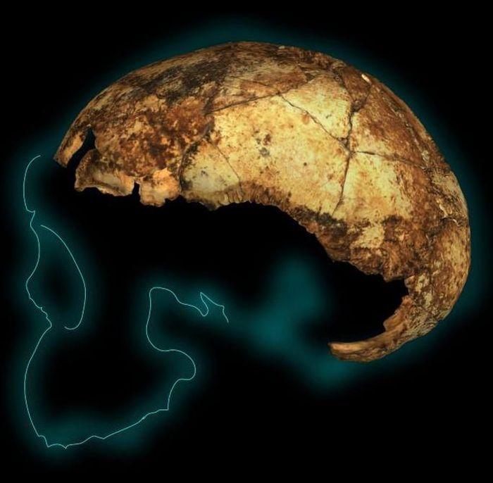 Tìm thấy 'loài người ma' 2 triệu năm trước chấn động thế giới