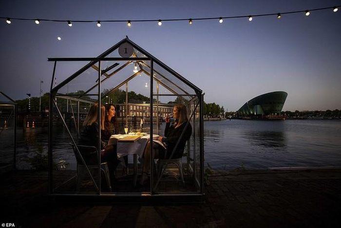 Hẹn hò thời COVID-19: Đến nhà hàng và ăn tối trong lồng kính mini ...