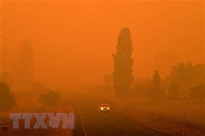 Australia: Khói cháy rừng khiến nhiều người nhập viện vì bệnh tim phổi