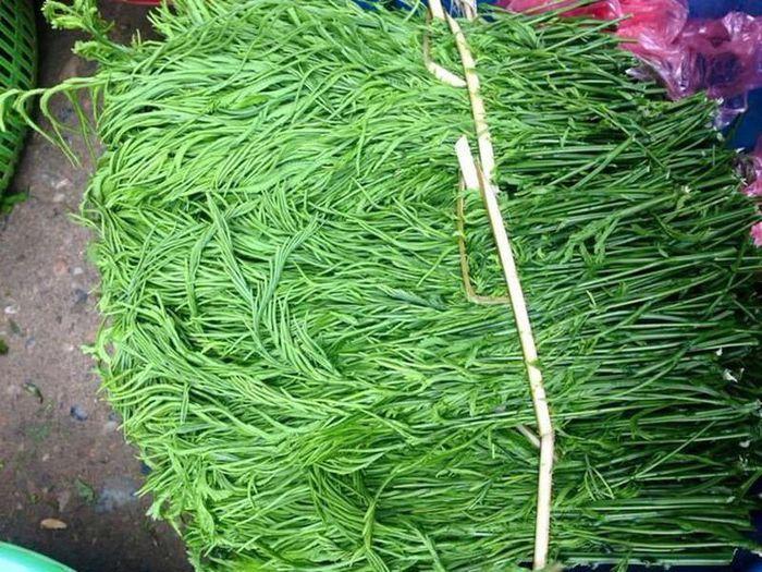 Không chỉ là món rau dại hái trên rừng, giờ đây rau thối được bán như là một đặc sản vùng Tây Bắc