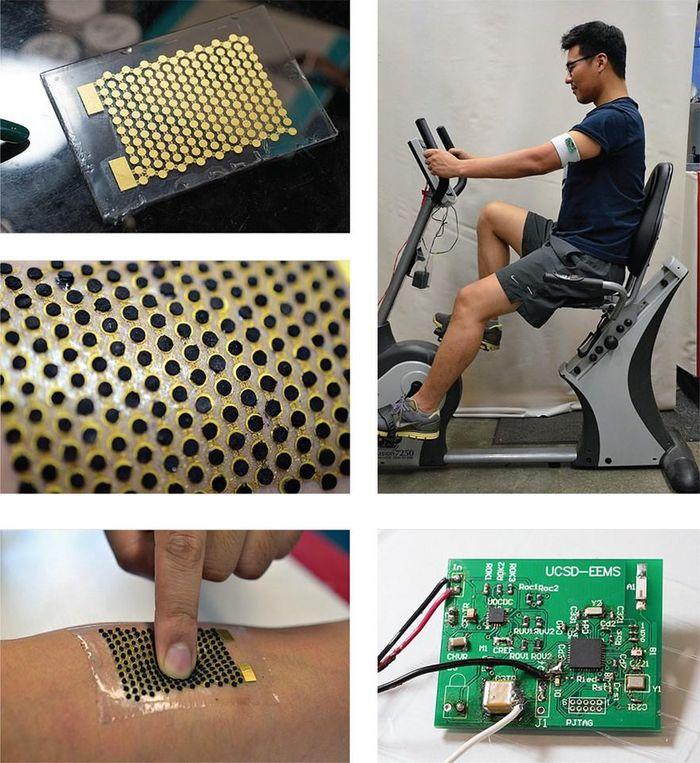 Độc đáo công nghệ biến mồ hôi thành nhiên liệu cho pin sinh học - Báo Tin  Tức TTXVN