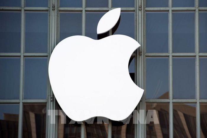 Apple phát triển công cụ tìm kiếm thay thế Google
