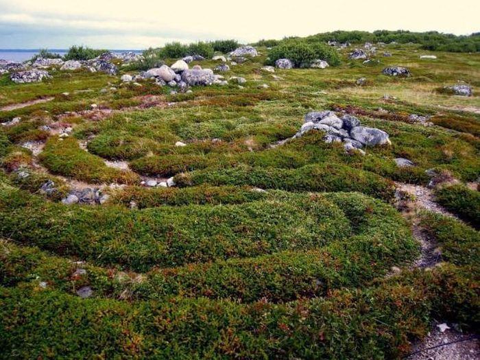 Kỳ bí những mê cung bằng đá ở Nga - ảnh 6.