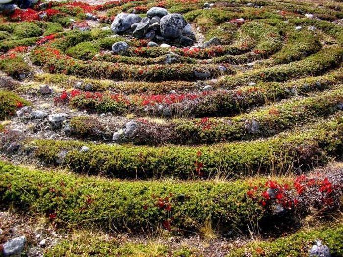 Kỳ bí những mê cung bằng đá ở Nga - ảnh 7.