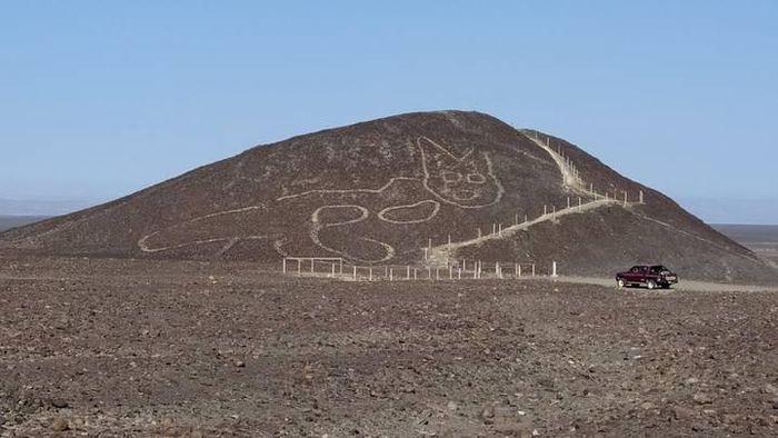 Mèo khổng lồ và những hình vẽ bí ẩn được phát hiện tại Peru