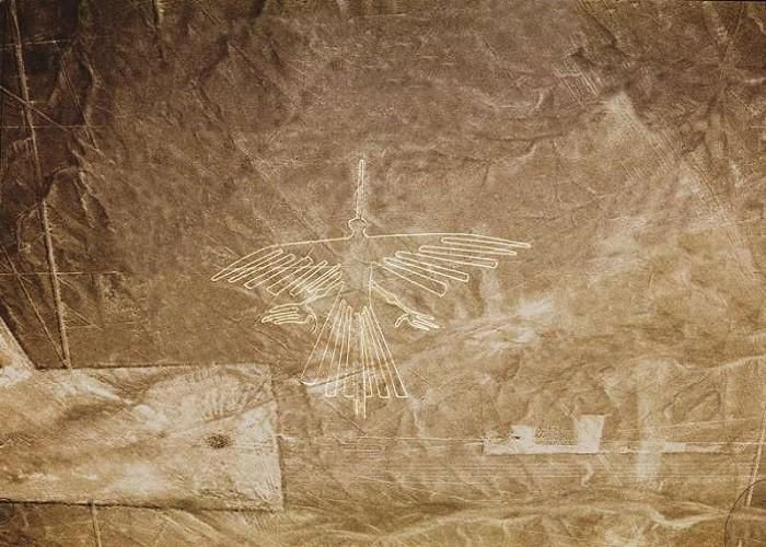 Mèo khổng lồ và những hình vẽ bí ẩn được phát hiện tại Peru - ảnh 13.