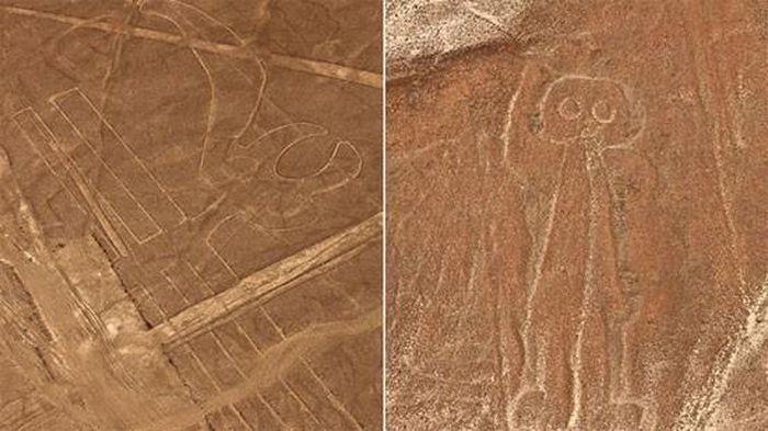 Mèo khổng lồ và những hình vẽ bí ẩn được phát hiện tại Peru - ảnh 2.